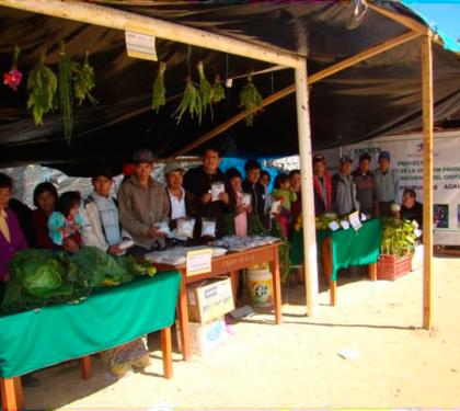 Comités de productores de la microcuenca del Chotano – Cutervo, participan de la I Feria Agroindustrial para la promoción de productos agrícolas.