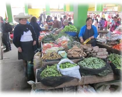 """Resultados del Convenio """"Seguridad Alimentaria Nutricional y Promoción de la Salud de Poblaciones Rurales, en Bolivia y Perú"""""""