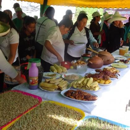 """SOSTENIBILIDAD DEL CONVENIO """"Seguridad Alimentaria, Nutricional y Promoción de la Salud de Poblaciones Rurales de Bolivia y Perú"""""""
